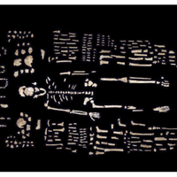 Screenshot of Homo naledi